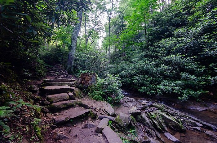 The Glen Burney Trail is much easier going down than up.