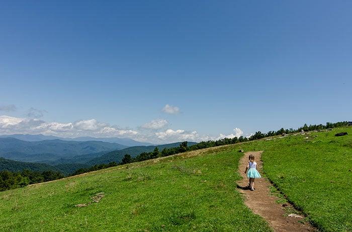 Bearwallow hiking trail near Asheville
