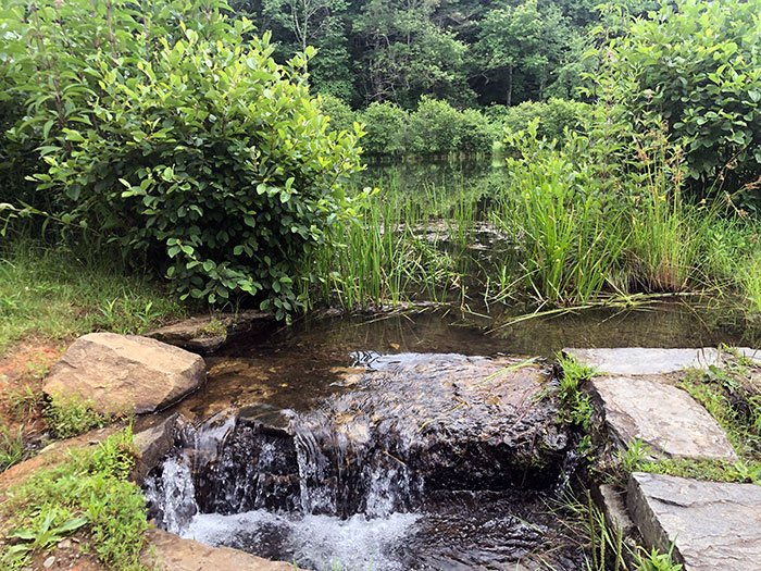 Little Glade Mill Pond NC Blue Ridge Parkway Stops