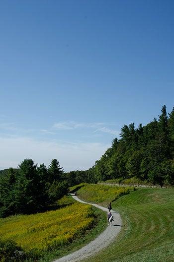 Moses Cone Memorial Park NC Blue Ridge Parkway Stops