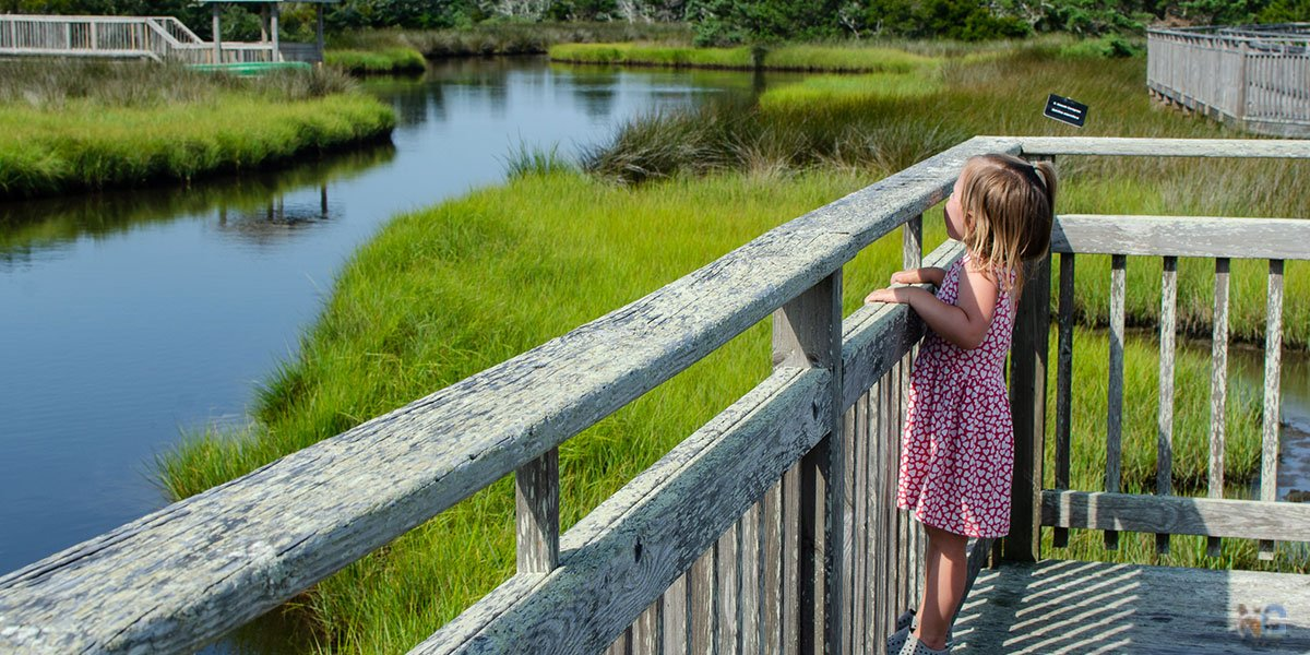 Outer Banks Hiking Trails for Kids and Adults