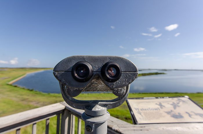 Pea Island observation deck
