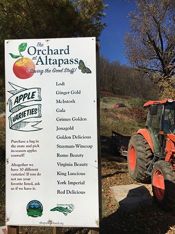 The Orchard at Altapass NC Blue Ridge Parkway Stops