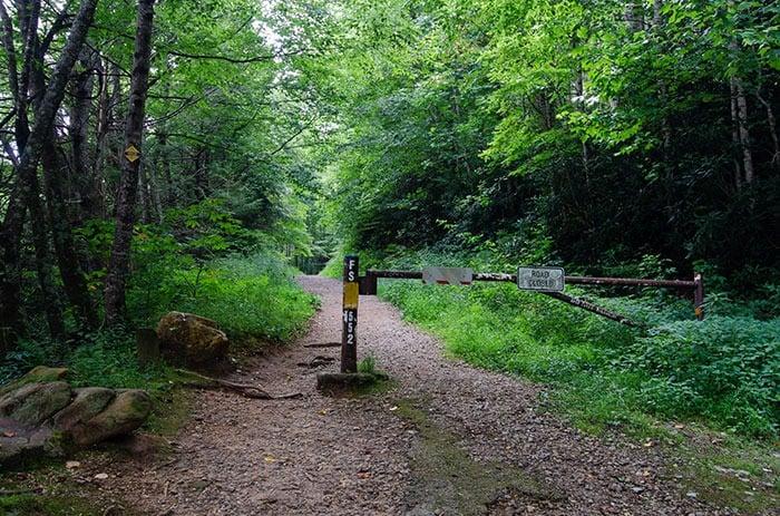 Trailhead at Roaring Fork Falls NC
