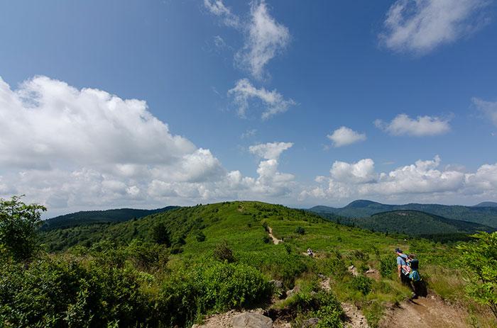 Best Hiking Trails in North Carolina Black Balsam Knob