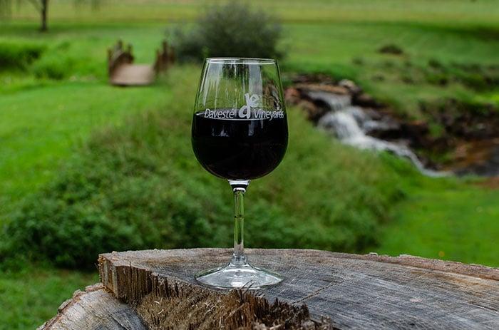 Daveste Vineyards near Statesville NC