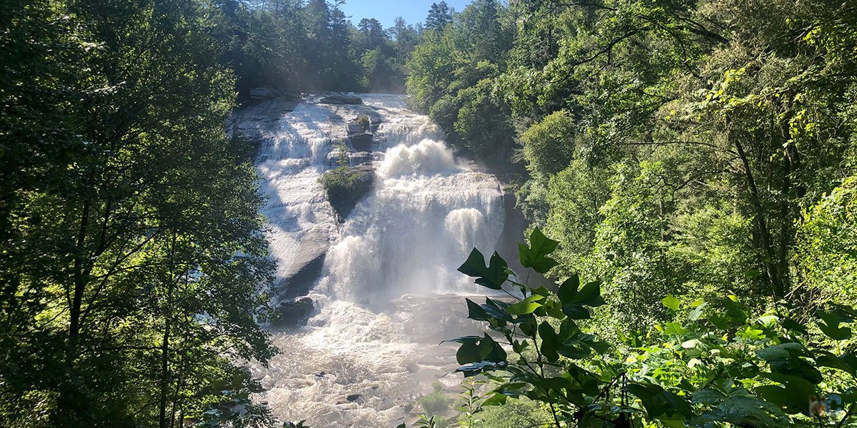 These are our picks for the best waterfalls in North Carolina.