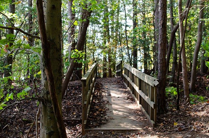 Lake Norman State Park things to do in Mooresville