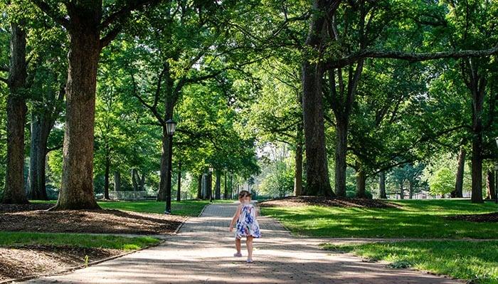 Central North Carolina UNC Chapel Hill