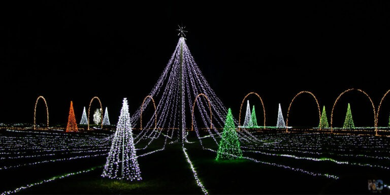 These are some of the best Christmas lights in North Carolina that you'll be able to find any year!