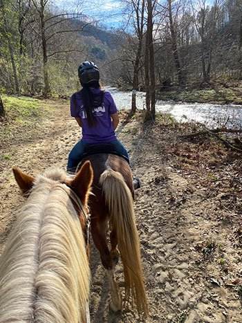 Riding at Leatherwood things to do in Wilkesboro NC