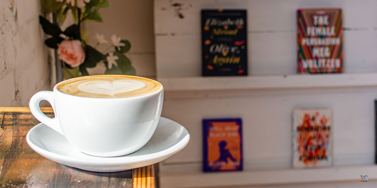 We think these are the best bookstores in North Carolina. Prove us wrong!
