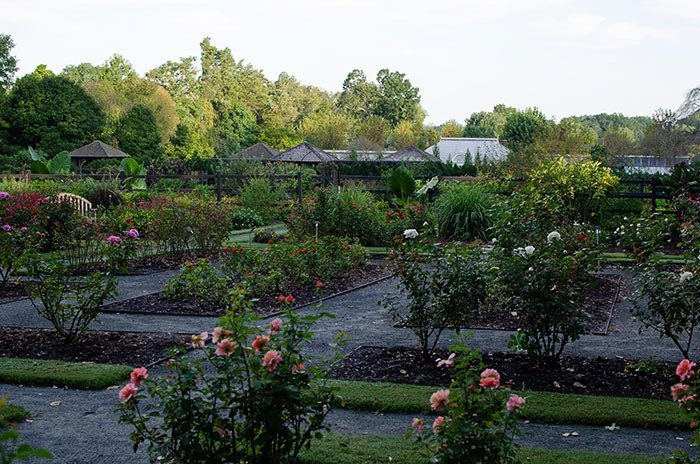 Reynolda Botanical gardens of north carolina