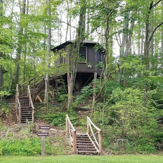 Tiny Houses in North Carolina Tree Top Cabin at Healing Springs