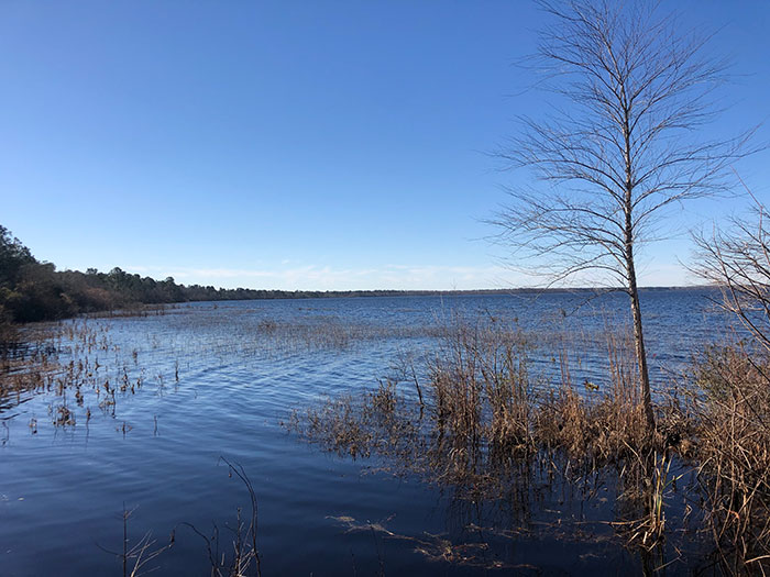 Lake Waccamaw North Carolina