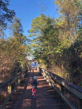 Lake Waccamaw State Park Boardwalk Trail
