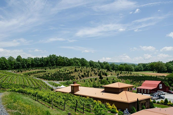 Linville Falls Winery NC Wineries