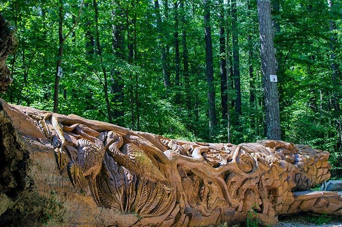 Weekend Getaways in North Carolina Raleigh Umstead State Park Chainsaw Art