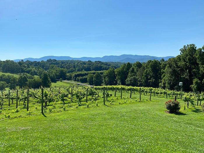 Weekend Getaways in North Carolina Silver Fork Winery Morganton