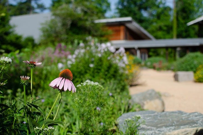 Day Trips from Greensboro NC Botanical Garden Chapel Hill