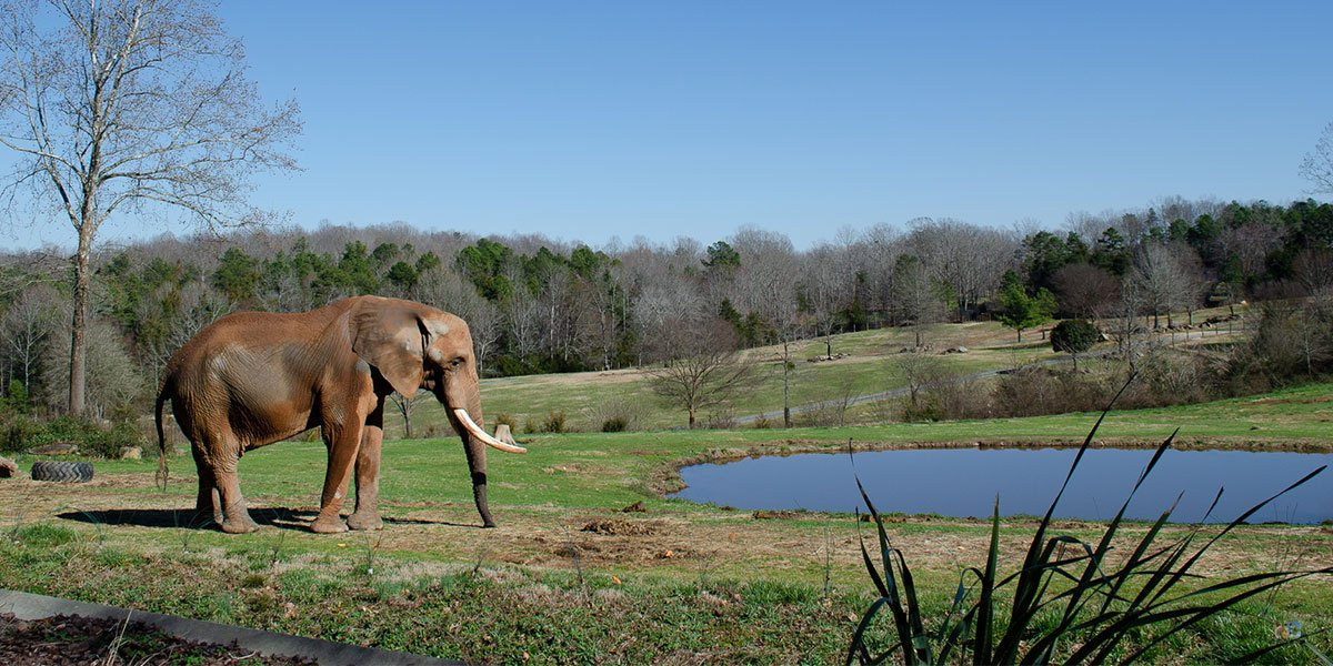 Day Trips from Greensboro NC