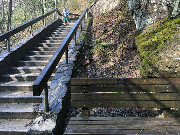 Looking Glass Falls Stairs