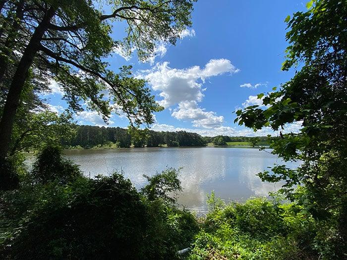 Shelley Lake Raleigh NC