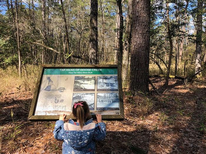 Goose Creek State Park Tar Kiln Trail