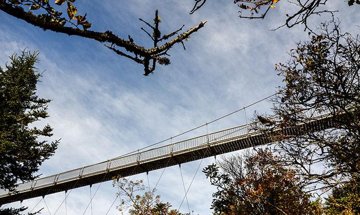 Grandfather Mountain Mile High Swinging Bridge