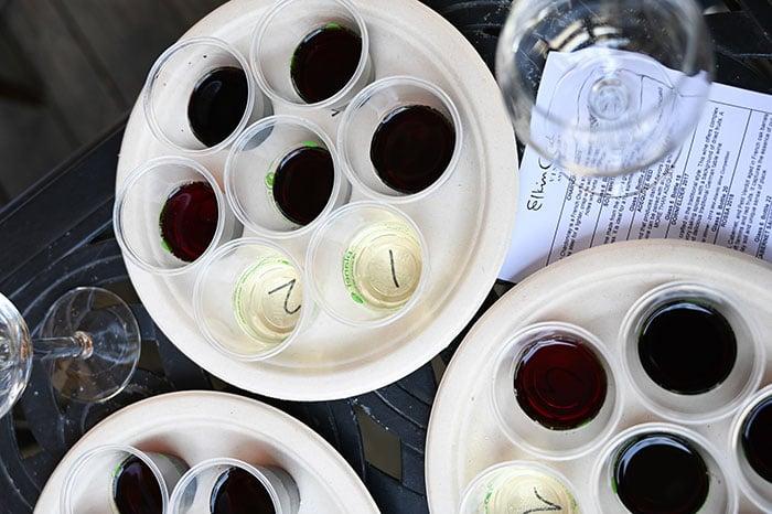 Wine Tasting at Elkin Creek Vineyard