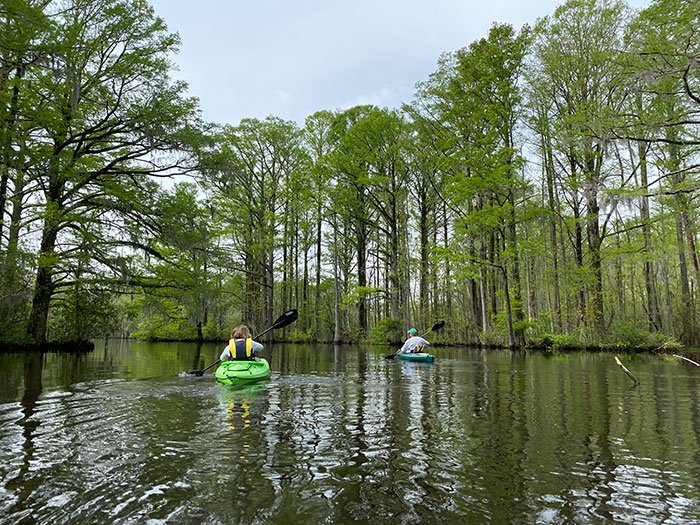 Kayaking things to do in Edenton NC.