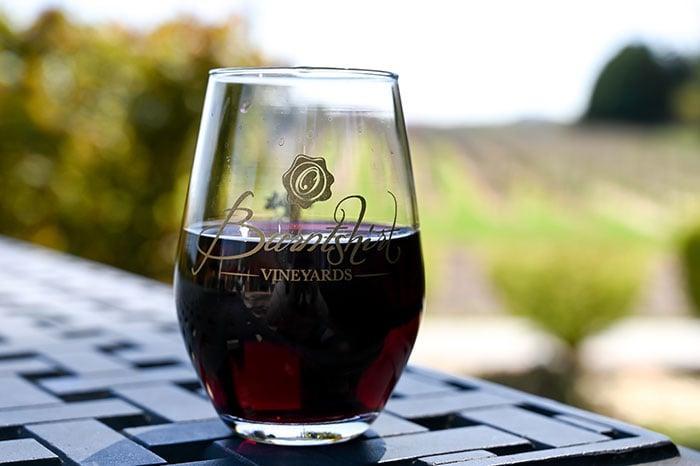 Day Trips from Asheville Burntshirt Vineyards Hendersonville