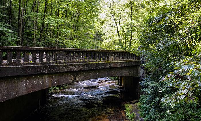 Moore Cove Falls Bridge