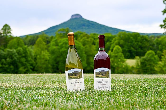 Surry County Wine Trail Pilot Mountain Vineyards