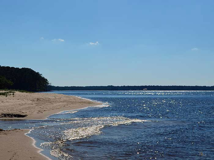 Things to Do in North Carolina Croatan National Forest