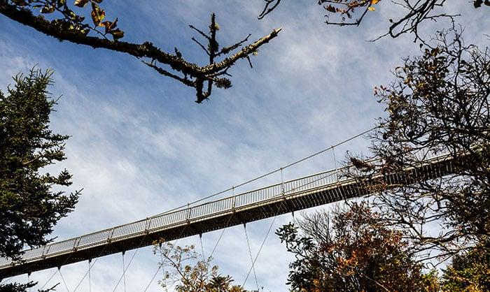 Things to Do in North Carolina Grandfather Mountain Mile High Swinging Bridge