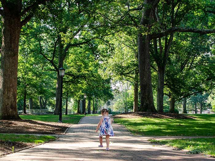 Things to Do in North Carolina UNC Chapel Hill North Carolina Campus