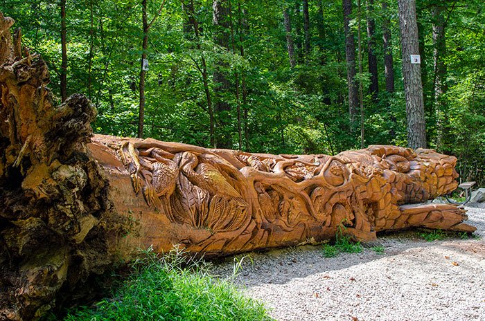 Things to Do in North Carolina Umstead State Park Chainsaw Art