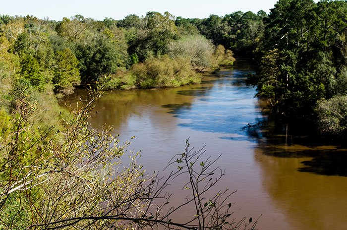 Day Trips from Durham NC Cliffs of the Neuse State Park