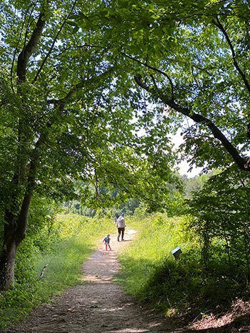 Day Trips from Durham NC Roanoke Rapids Roanoke Canal Trail