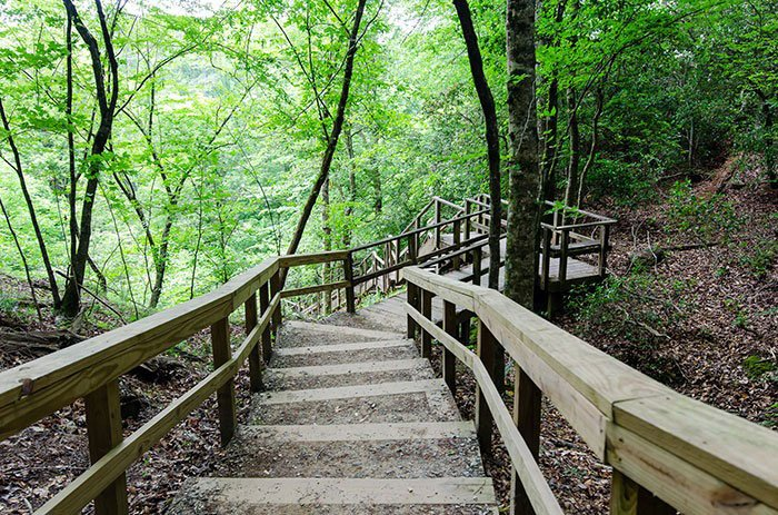 Day Trips from Durham Raven Rock State Park