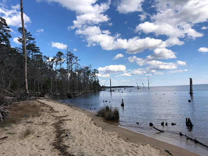 Day Trips from Raleigh NC Goose Creek State Park