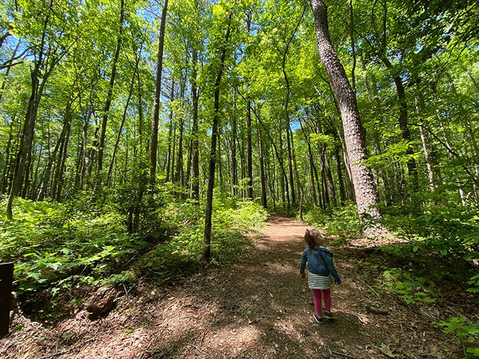 Day Trips from Raleigh NC Medoc Mountain State Park