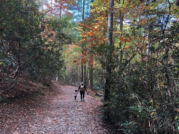 Hanging Rock Trail Fall Foliage