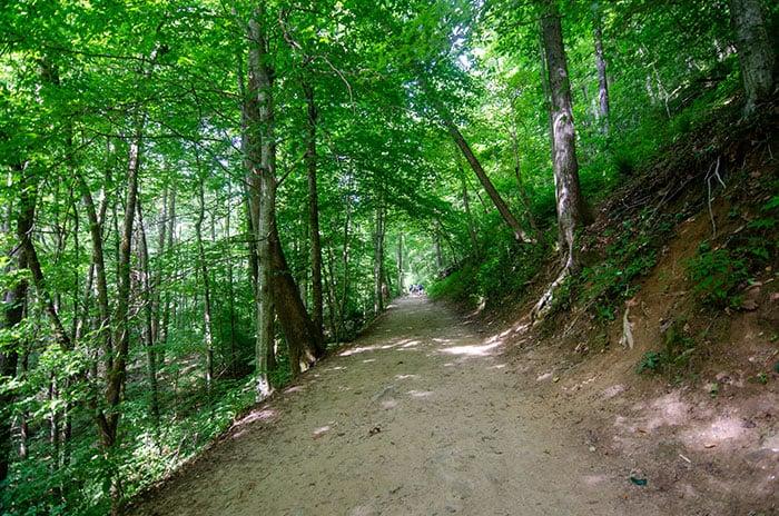 Catawba Falls Trail NC