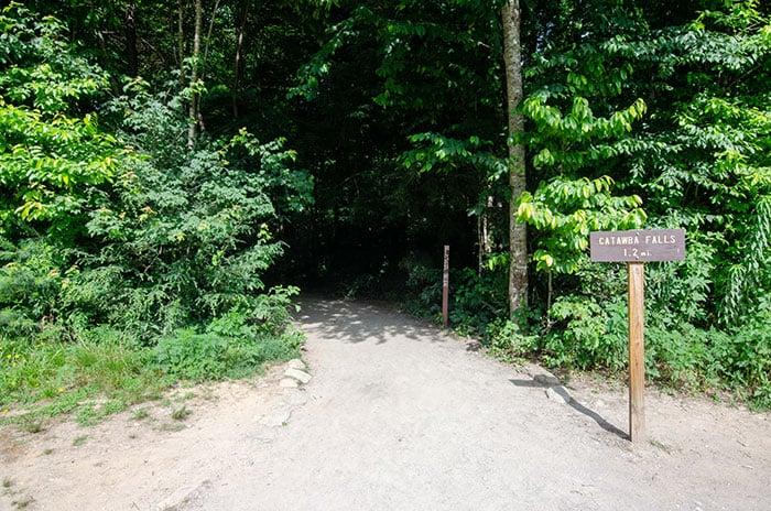 Catawba Falls Trail Start