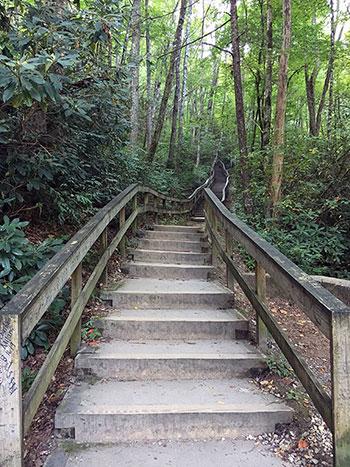 Steps Leading Up to Mingo Falls Cherokee NC