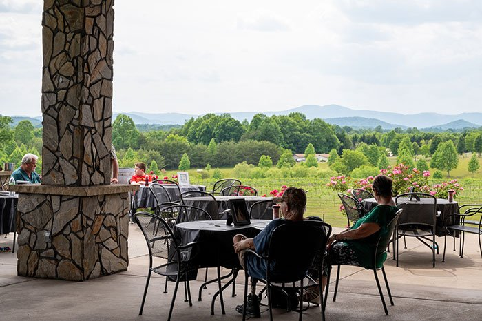 Surry County NC Round Peak Vineyards Mount Airy