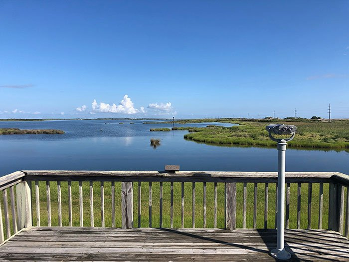 Things to Do in the Outer Banks Pea Island National Wildlife Refuge