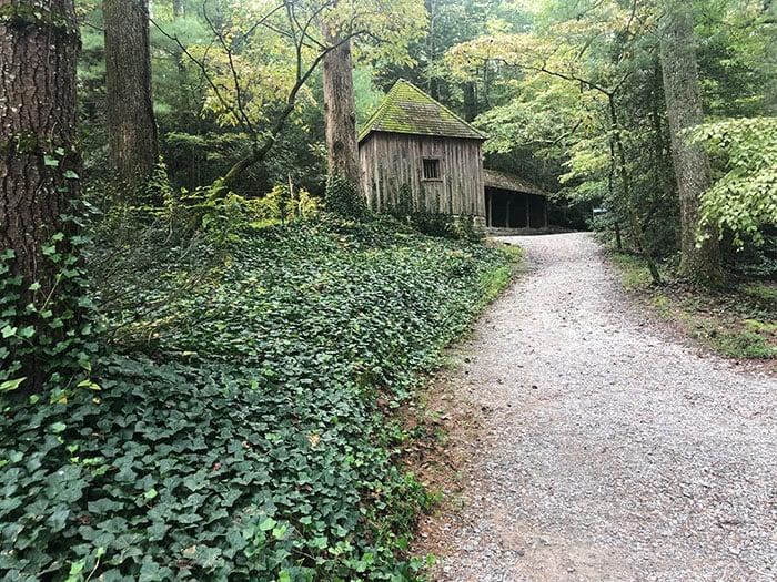 Carl Sandburg Home trails